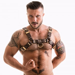 TITUS Leather H-Front Chest Harness | Brown & Gold