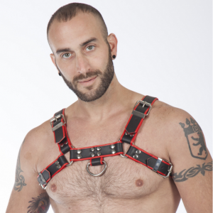 Titus H-Front Leather Chest Harness | Black & Red