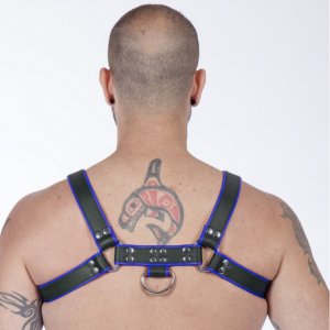 Titus H-Front Leather Chest Harness | Black & Blue